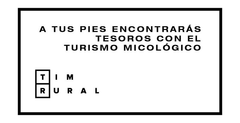 TURISMO MICOLOGICO-01