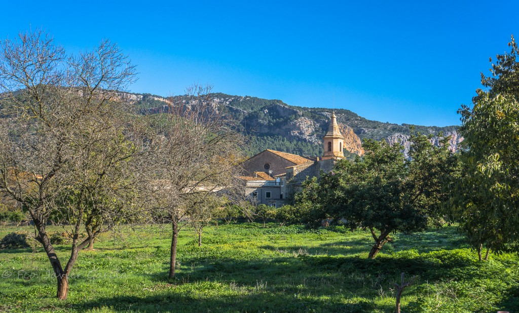Puigpunyet (Mallorca). Autor: Javier GarcA�a Lorenzo